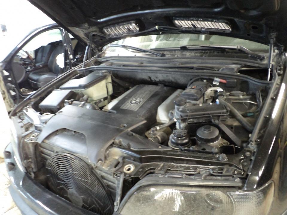 Замена масла в двигателе БМВ Х5 е53 бензин